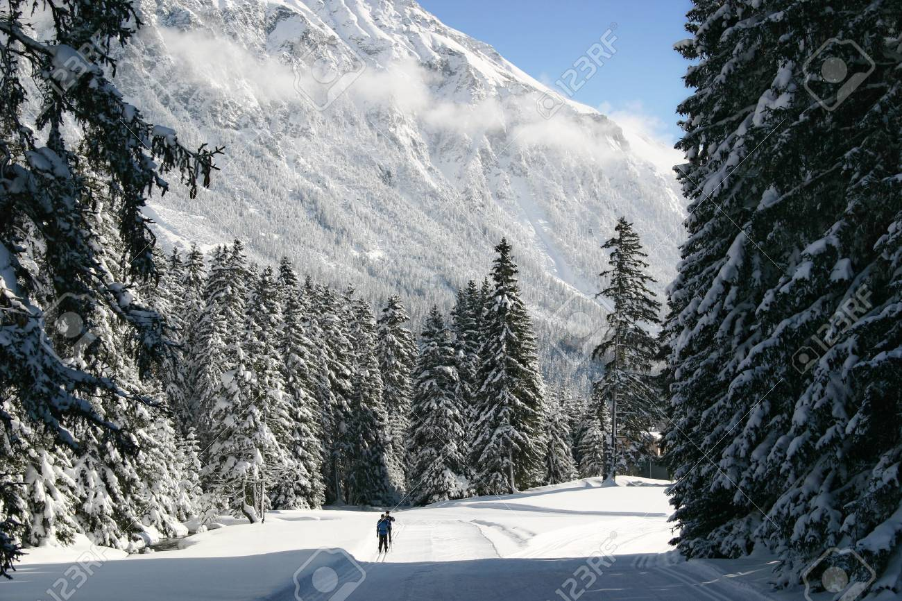 Cross-country skiing in the Alps Stock Photo - 18116478