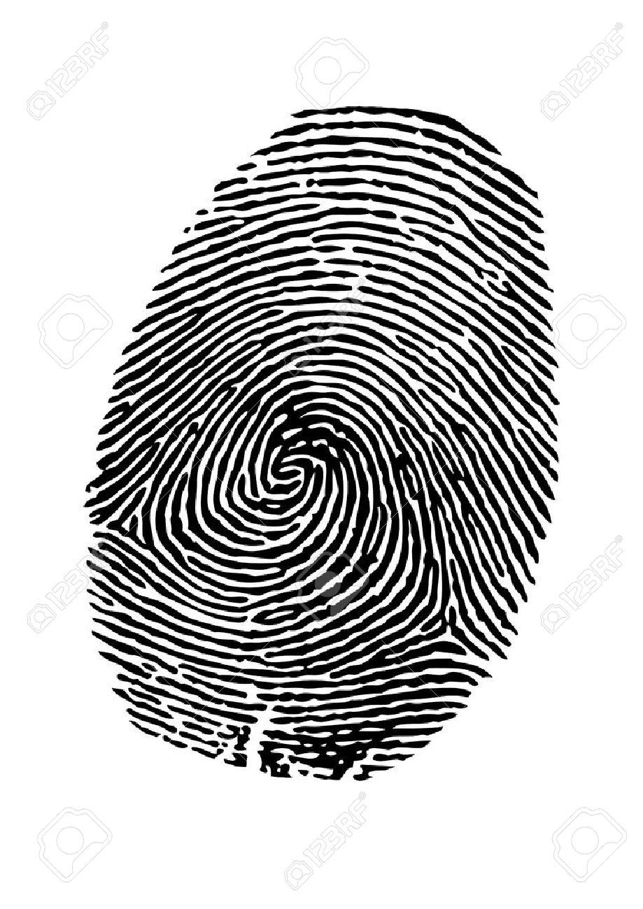 vector fingerprint on white background royalty free cliparts rh 123rf com fingerprinting victoria tx fingerprint vector art
