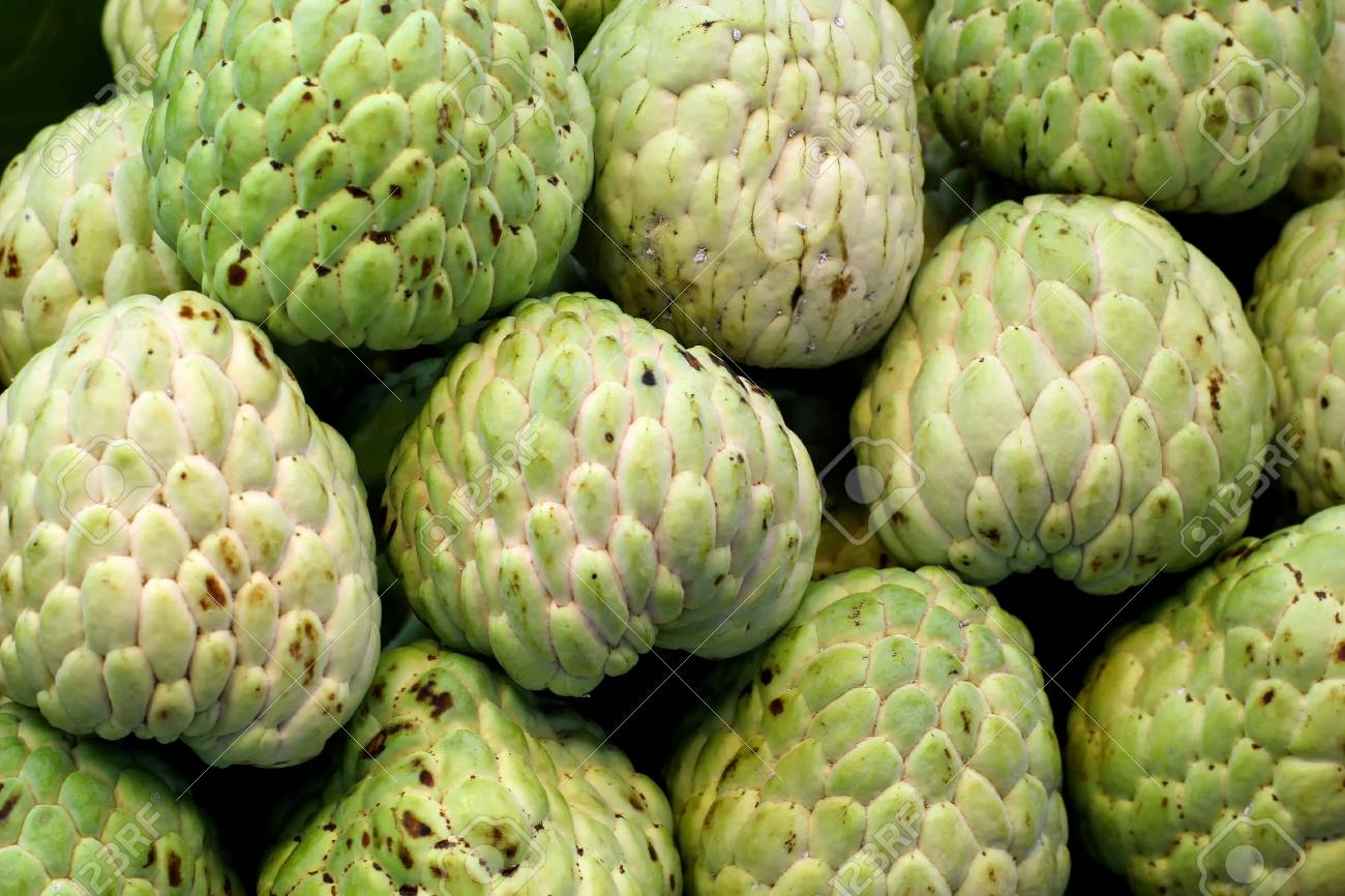 many sugar apple at fruit market stock photo, picture and royalty