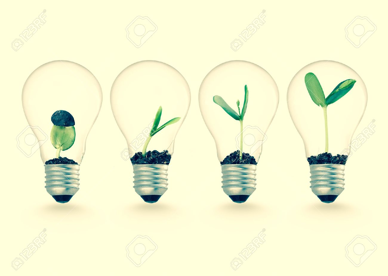 Plant growing in lightbulb , ecology ideas growth concept - 50213192
