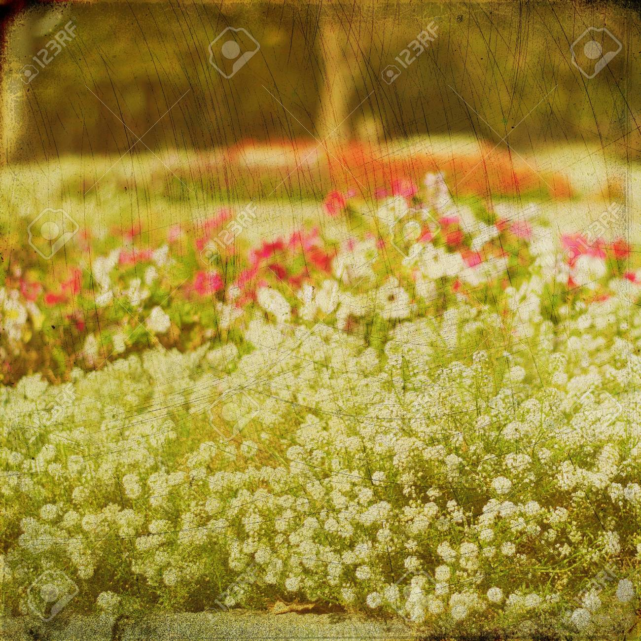 Grunge nature background, vintage paper texture Stock Photo - 15695039