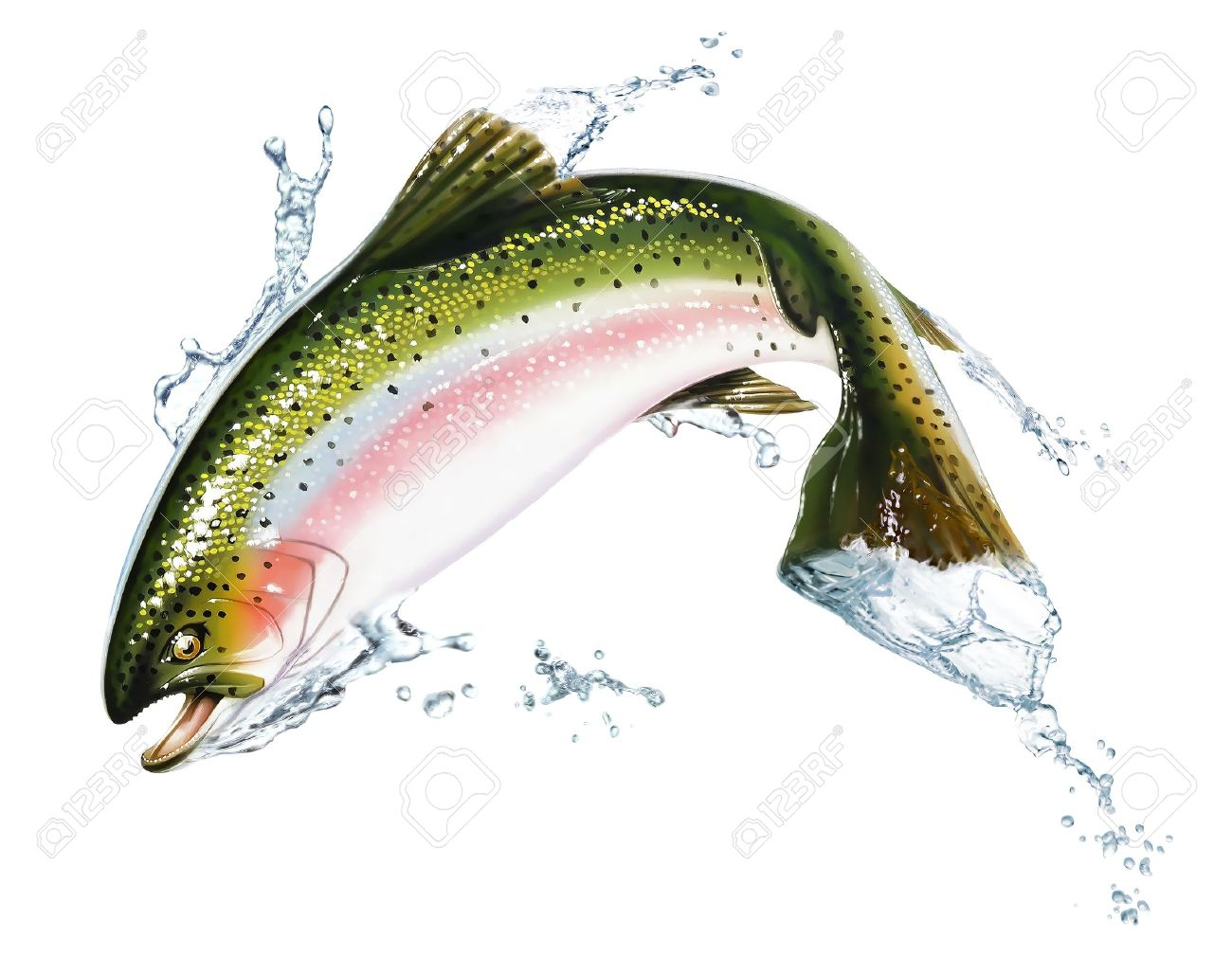 Freshwater fish jumping - Fresh Water Fish Fish Jumping Out Of The Water With Some Splashes Photorealistic