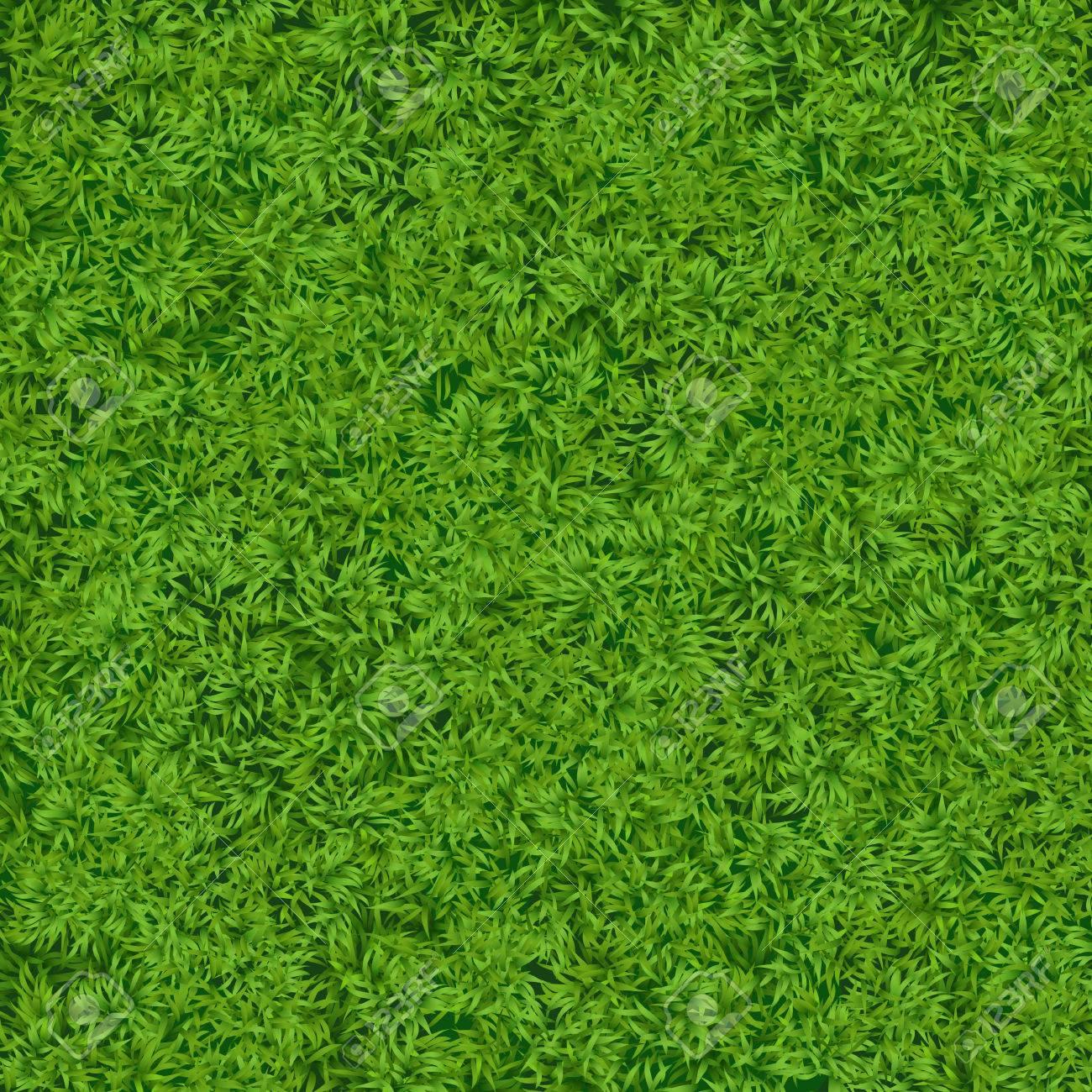 Natural Realistic Green Grass Texture Background. Soccer Grass ...
