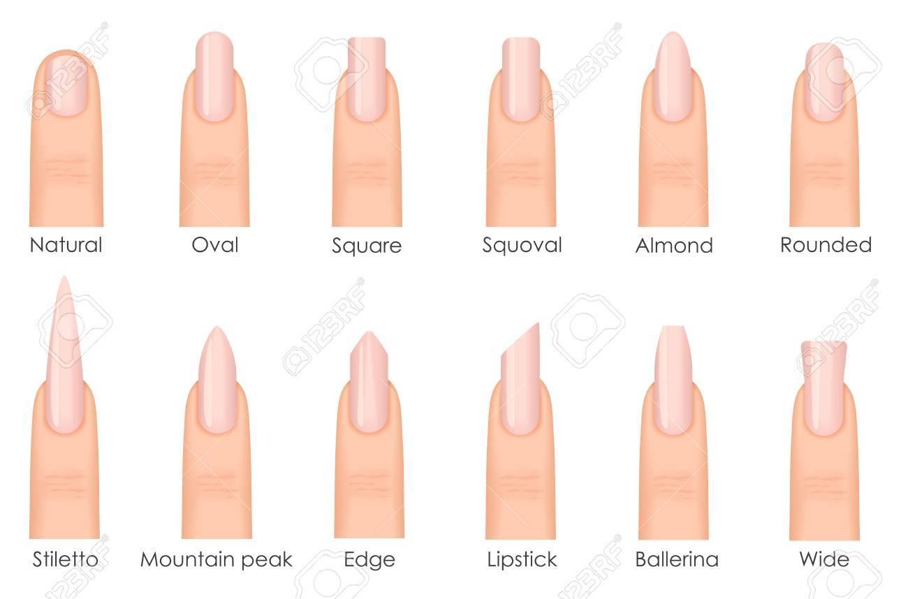 verschiedene art und weise nagelformen. set arten von nägeln. mode