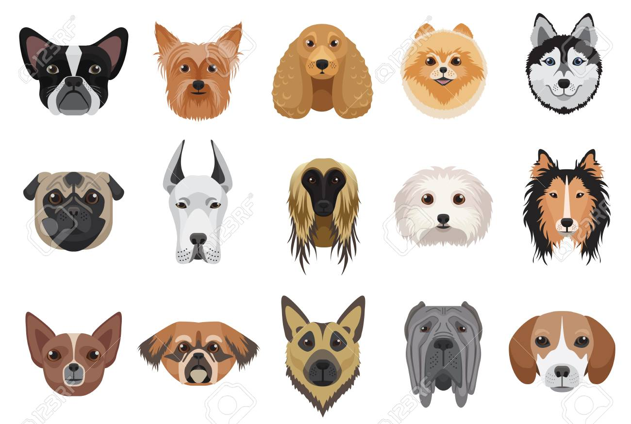 Image of: Draw Dogs Cartoon Heads Face Emoticons Vector Set Stockfoto 112693230 123rf Dogs Cartoon Heads Face Emoticons Vector Set Royaltyvrije Foto
