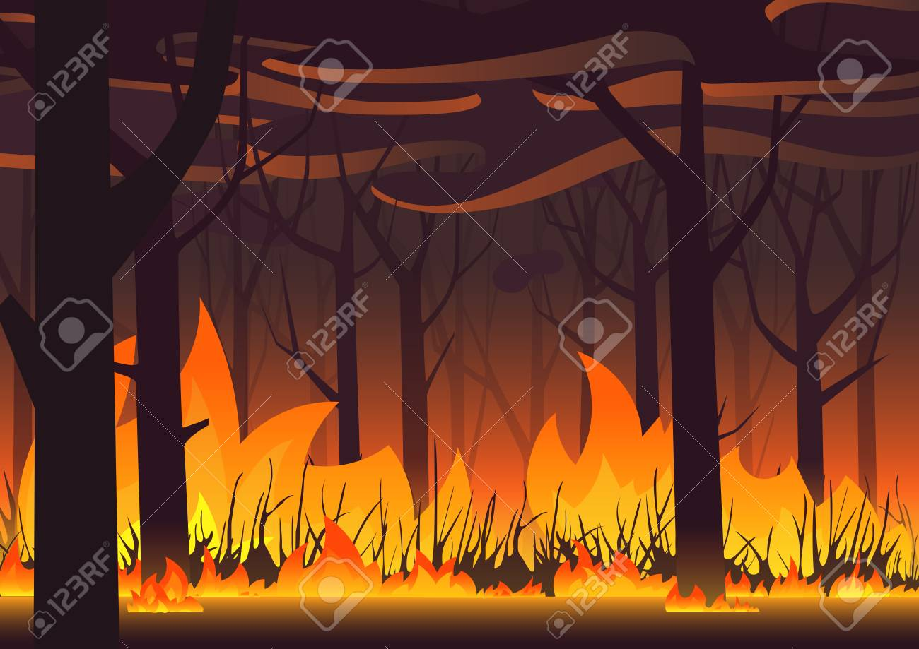 Woodland eco banner. Fire in forest. Wildfire landscape vector illustration - 122040457