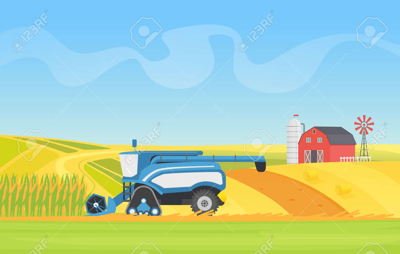 Corn harvesting combine machine working in agricultural field landscape vector illustration. Cartoon countryside natural agro farming technology, harvester equipment cropping cereal plants background - 170311241