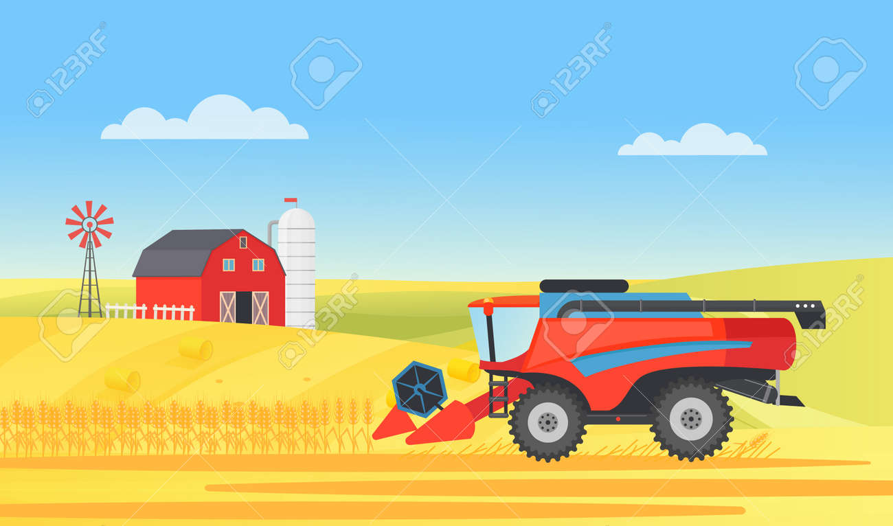 Wheat farm harvester working in village rural landscape, agriculture work vector illustration. Cartoon agricultural farmer machine harvesting on countryside farmland field with barn, mill background - 170638026