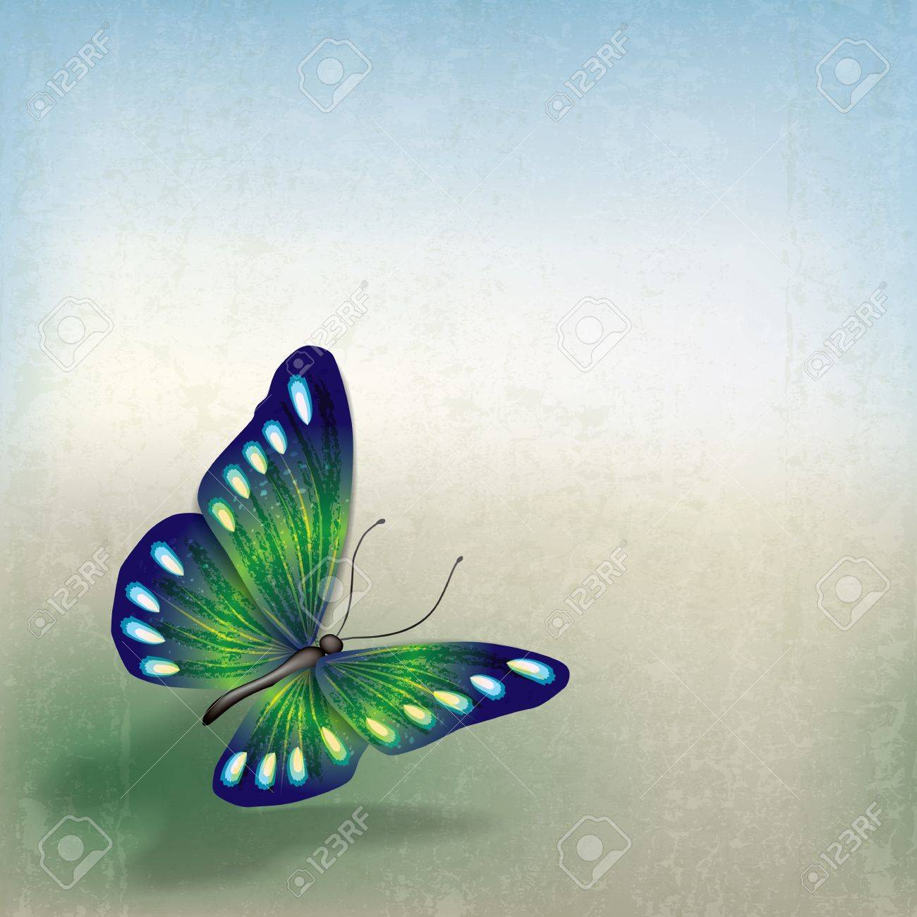 abstract grunge background with butterfly on gtay Stock Vector - 18525262