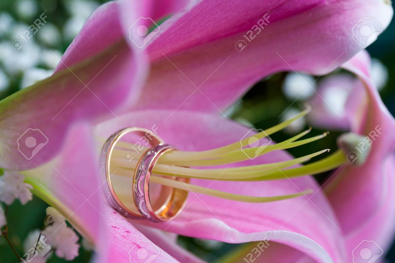Pair Of Wedding Rings On The Pistil Of The Lily. Very Shallow ...