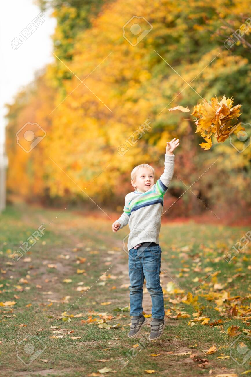 Happy little boy gathering autumn leaves in the park in autumn - 131894762
