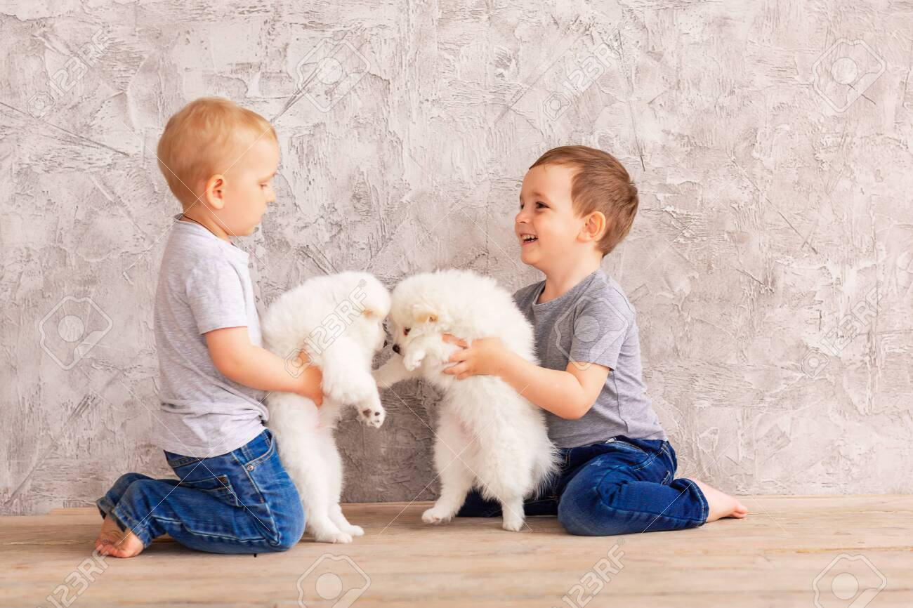 Two Cute Little Baby Boys Playing With Little White Puppies Stock Photo Picture And Royalty Free Image Image 145708310
