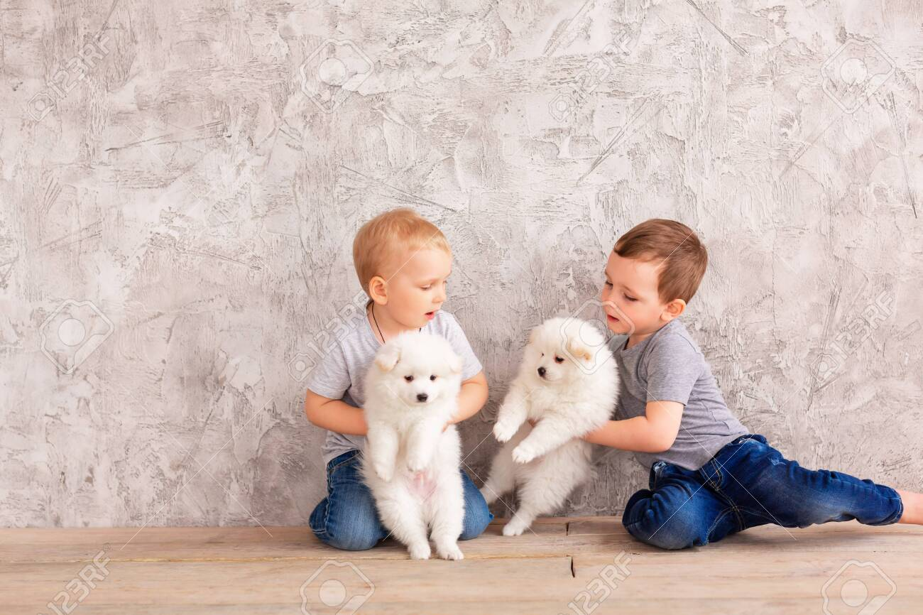 Two Cute Little Baby Boys Playing With Little White Puppies Stock Photo Picture And Royalty Free Image Image 145722698