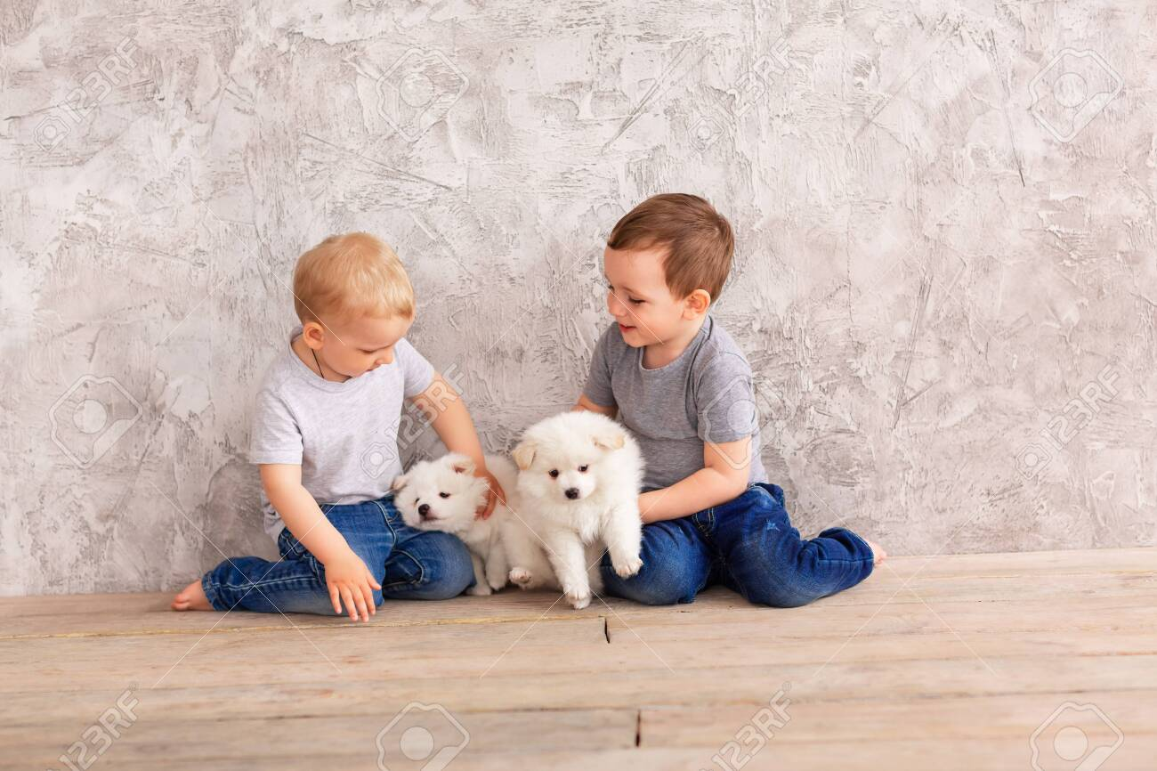Two Cute Little Baby Boys Playing With Little White Puppies Stock Photo Picture And Royalty Free Image Image 147258787