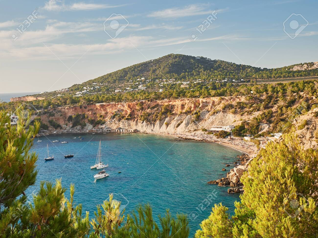 aerial view of natural park and beach of cala D´hort in Ibiza, Balearics,Spain - 133106651