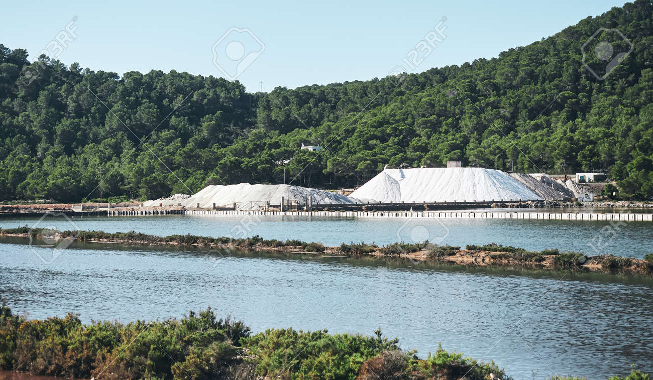 salt mountains and vegetation in the natural park of Ses Salines de Ibiza, Baleares, Spain - 170816871