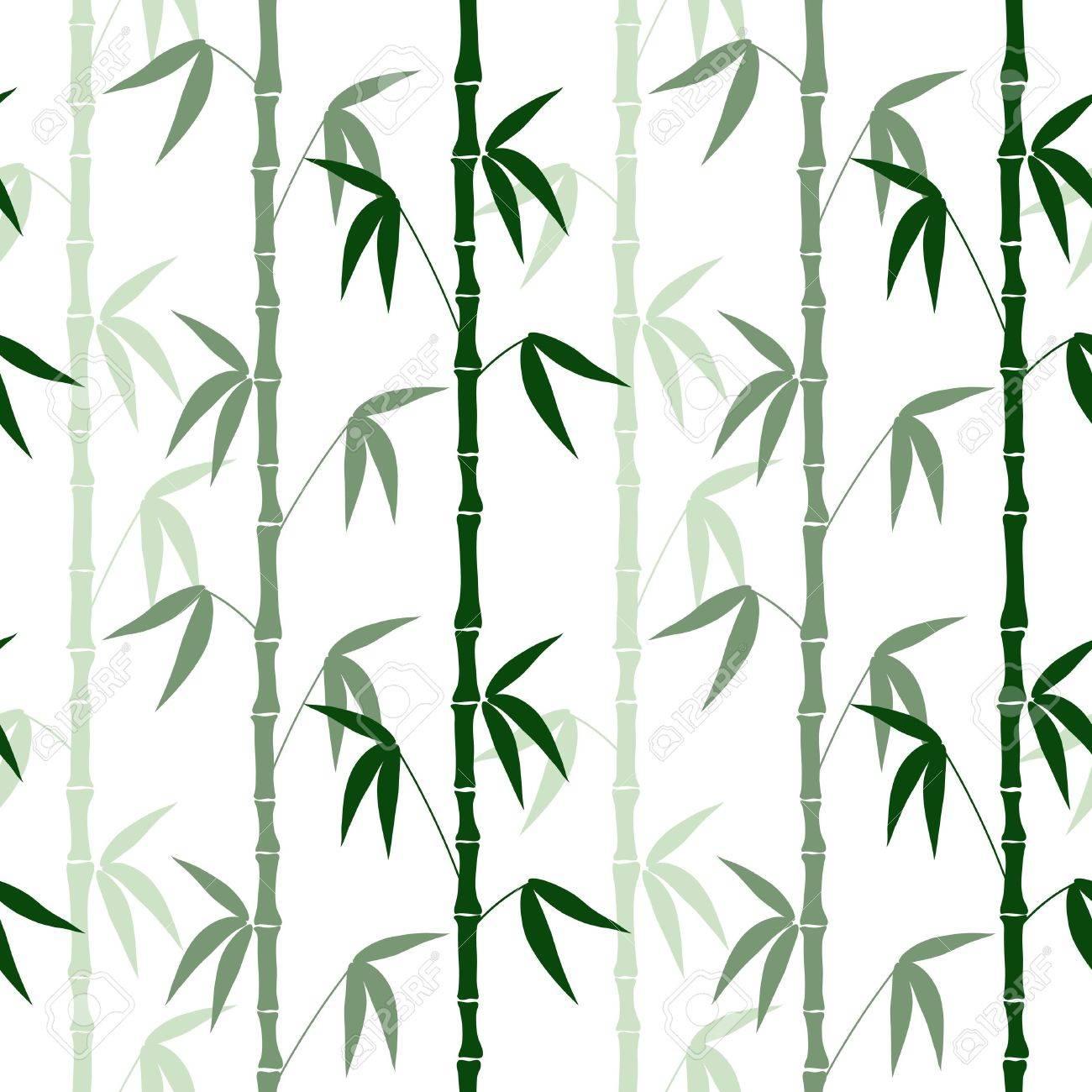 Resumen Patrón Sin Costuras De Bambú En El Vector De Fondo Blanco ...