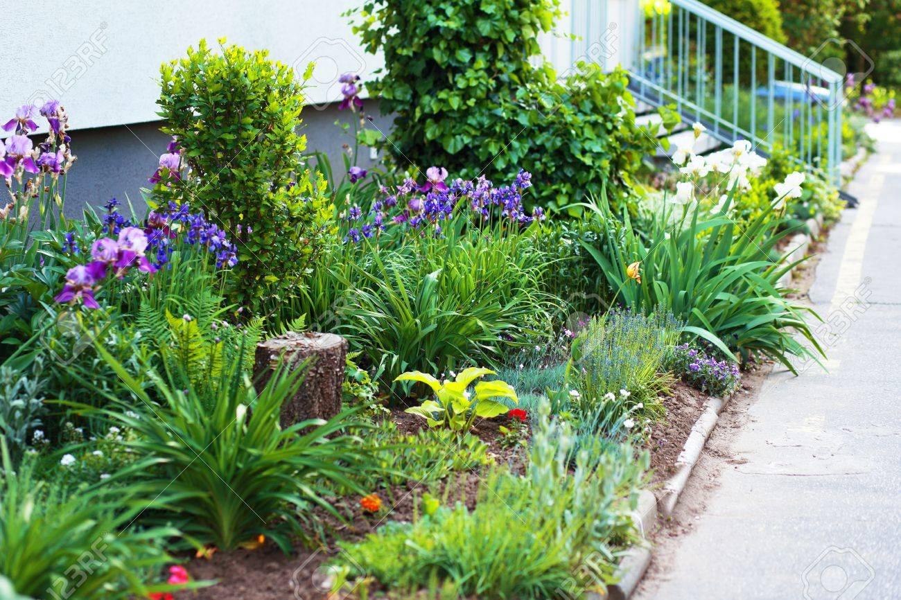 Luxuriant jardin paysager avec parterre et colorées plantes près immeuble  moderne