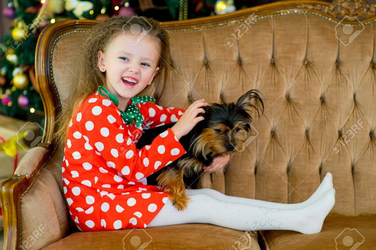 Happy Little Mädchen Und Hund Als Geschenk Zu Weihnachten ...