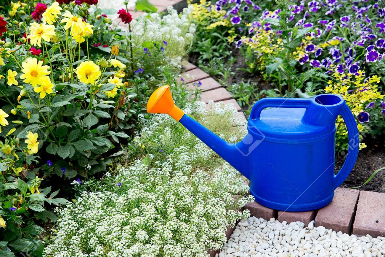 Cosas Para Jardinería Fotos, Retratos, Imágenes Y Fotografía De ...