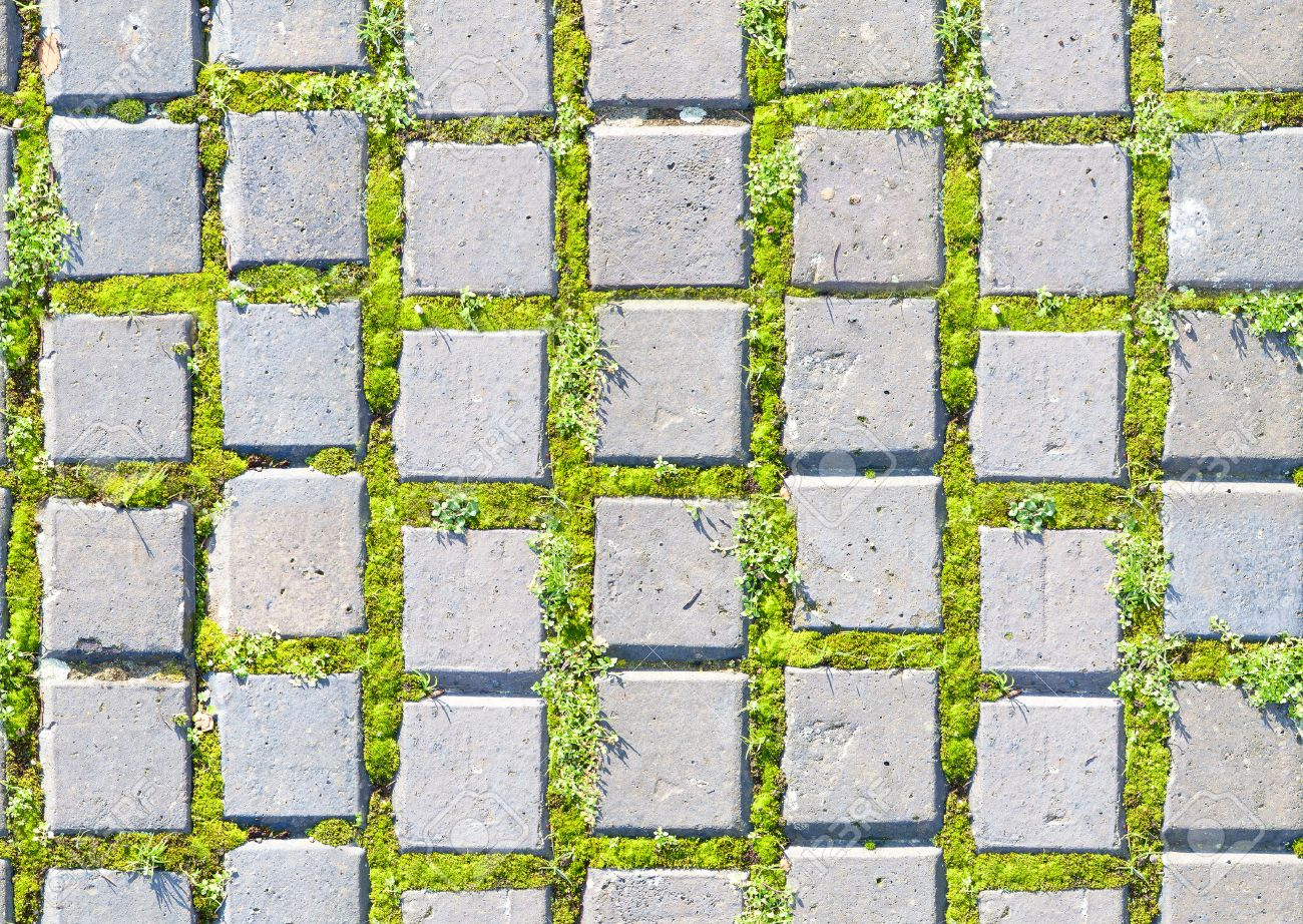 With Grass And Paving Stones Texture