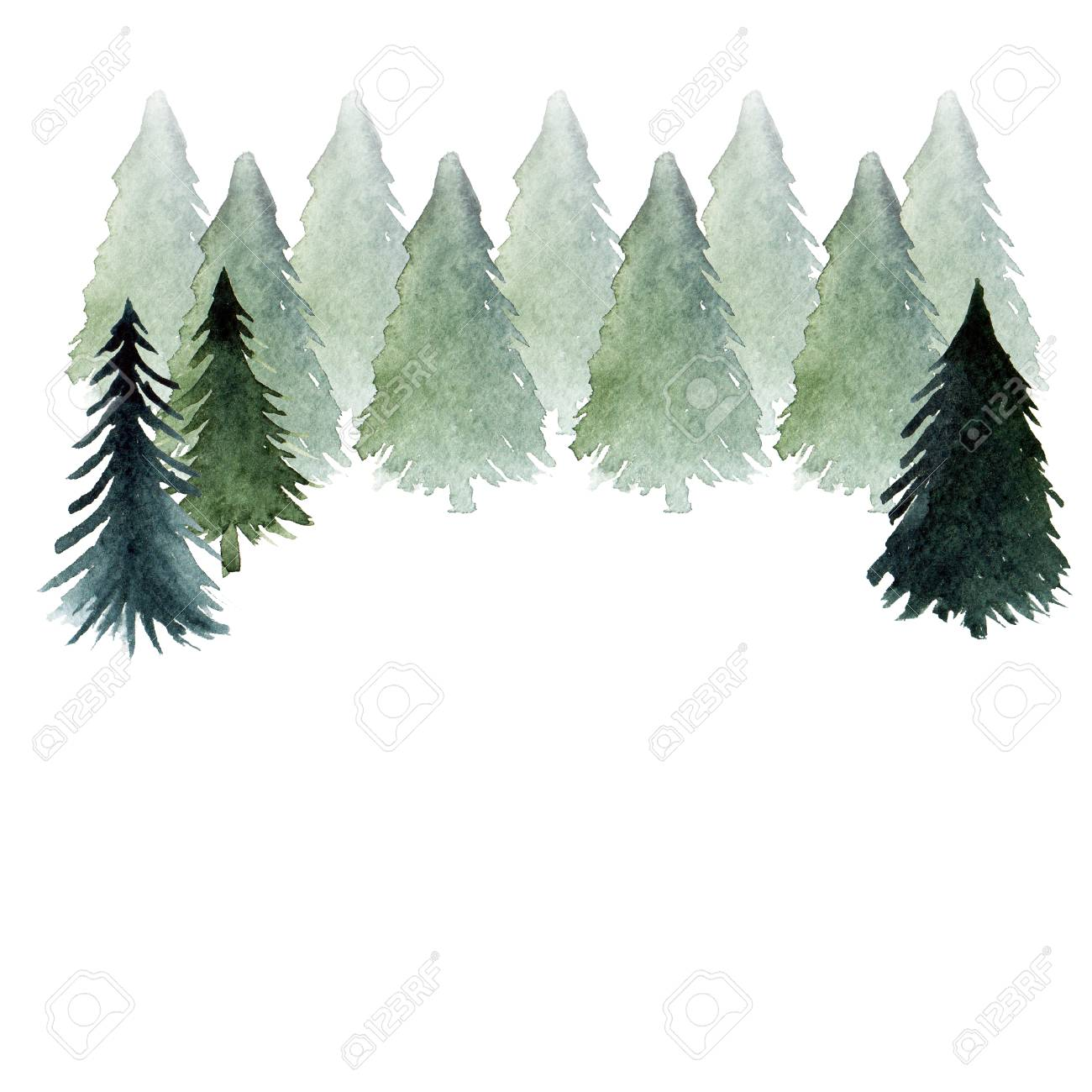 green fir tree forest isolated abstract watercolor free hand stock photo picture and royalty free image image 105215077 green fir tree forest isolated abstract watercolor free hand