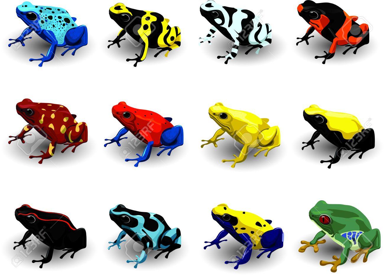 set poison arrow frog vector illustration royalty free cliparts rh 123rf com Golden Poison Dart Frog Glass Frog