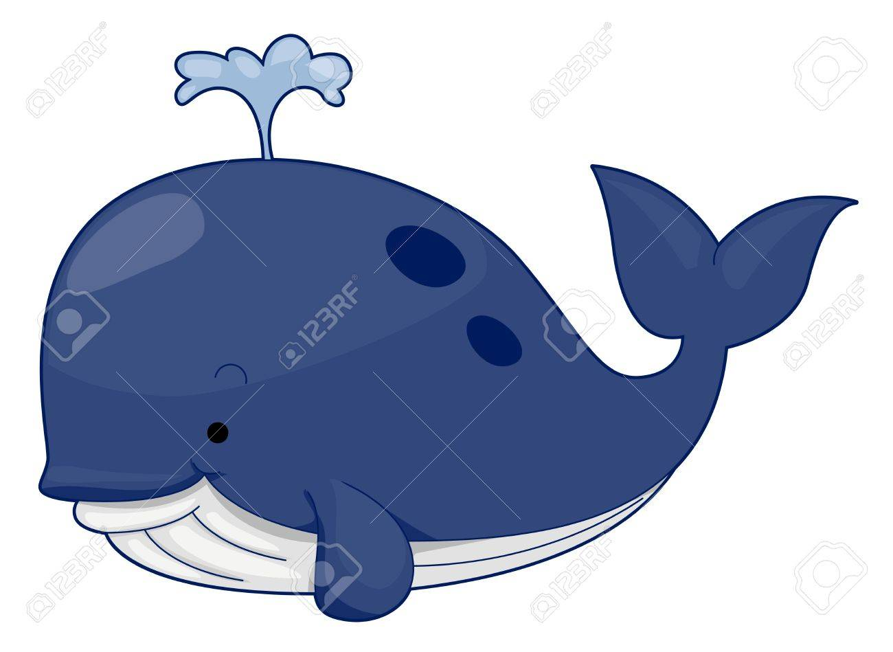 Cute whale in water cartoon isolated illustration stock photography - Cute Whale Stock Photo 7764878