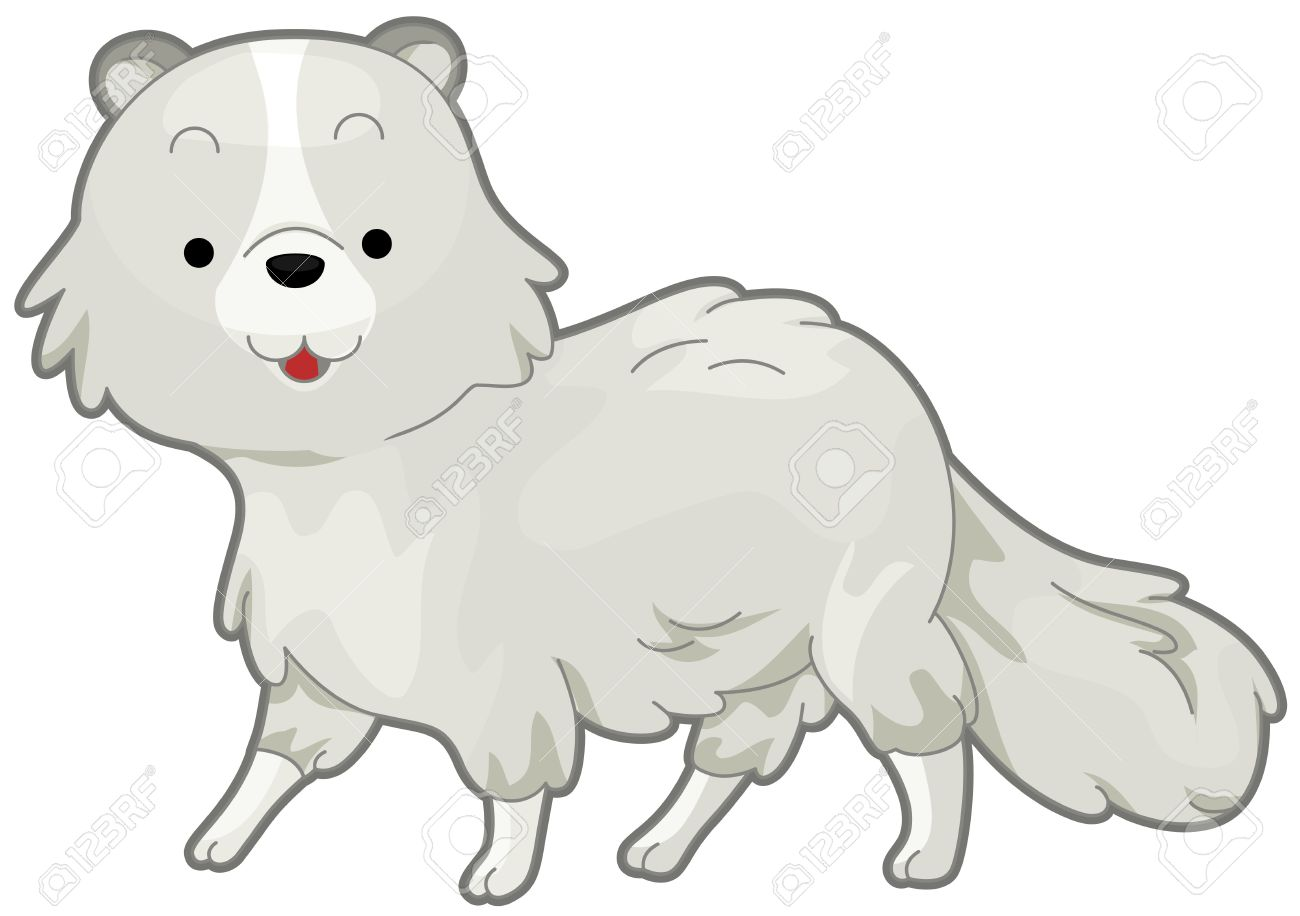 298 arctic fox stock vector illustration and royalty free arctic