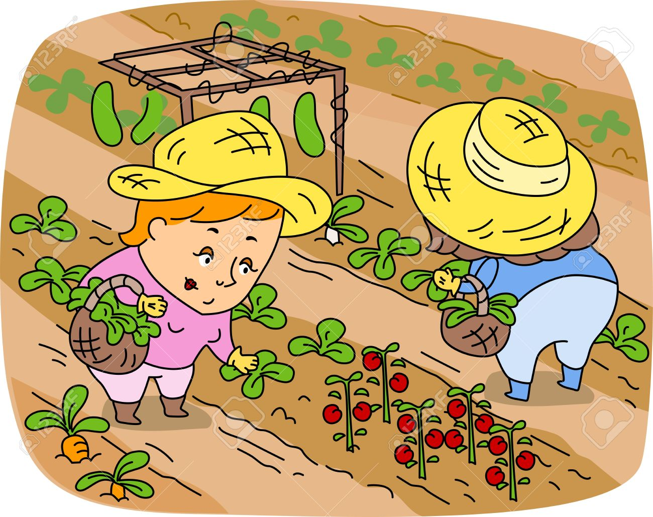 Illustration of Women Picking Vegetables Stock Photo - 9947691