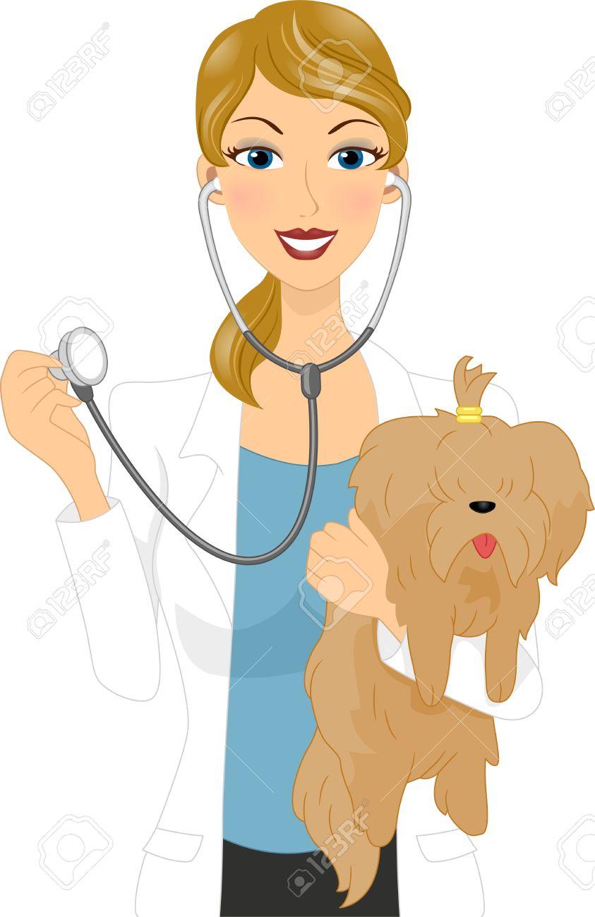Illustration of a Veterinarian Examining a Dog Stock Illustration - 11330127