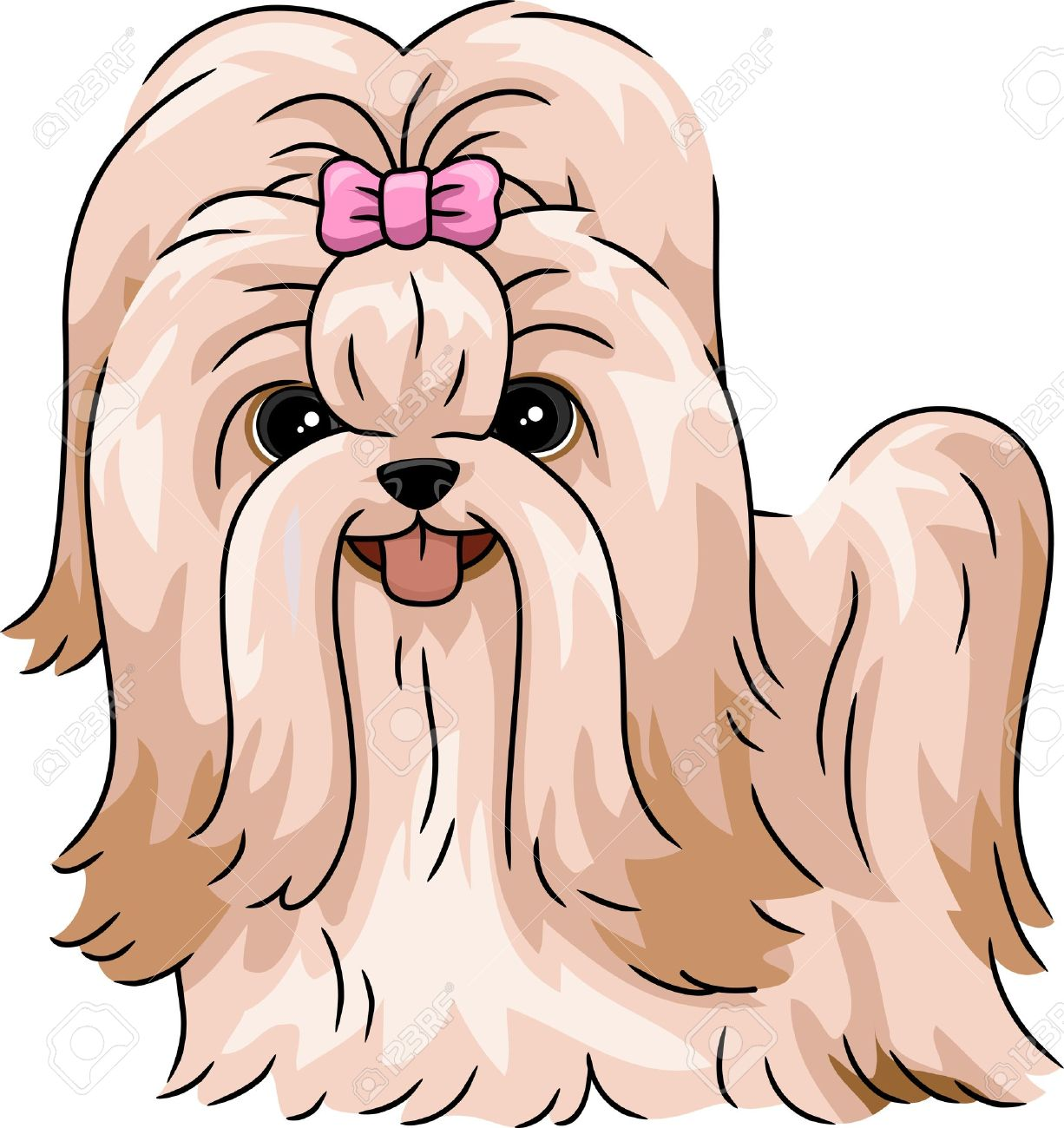 344 shih tzu stock illustrations cliparts and royalty free shih