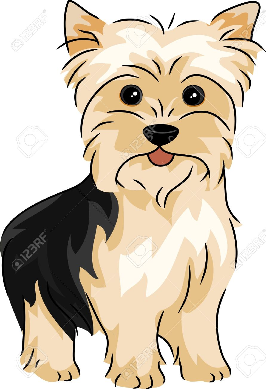 Illustration Featuring A Yorkshire Terrier Stock Photo Picture And