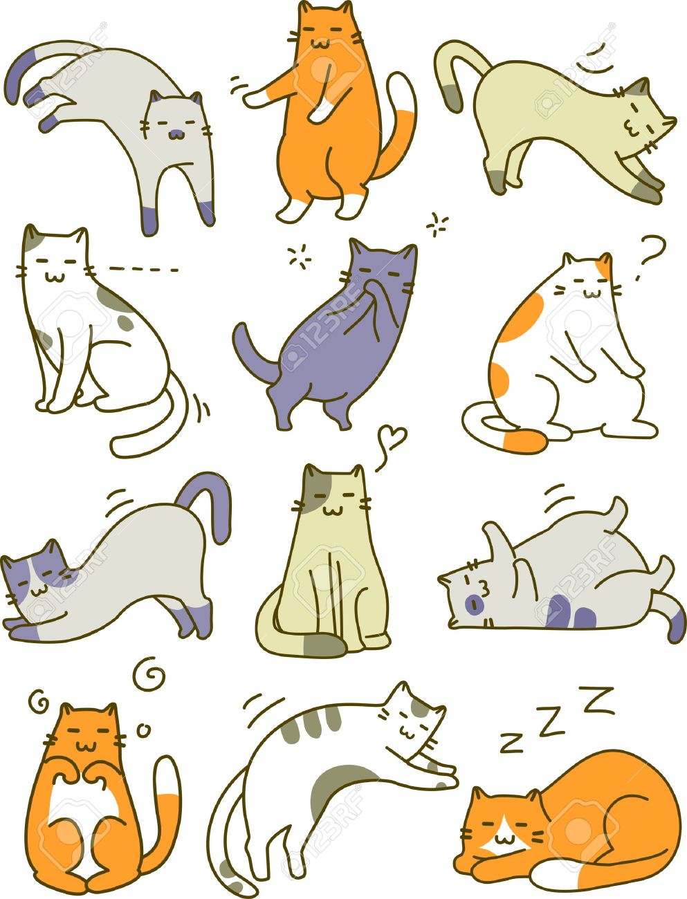 The Cat Poses