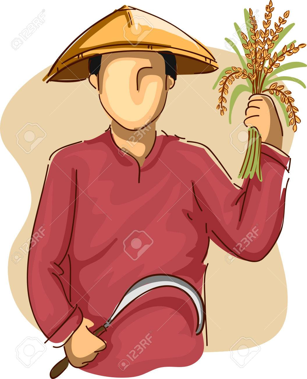 Agriculturist Harvest Rice Vector Design Royalty Free Cliparts, Vectors,  And Stock Illustration. Image 56497136.