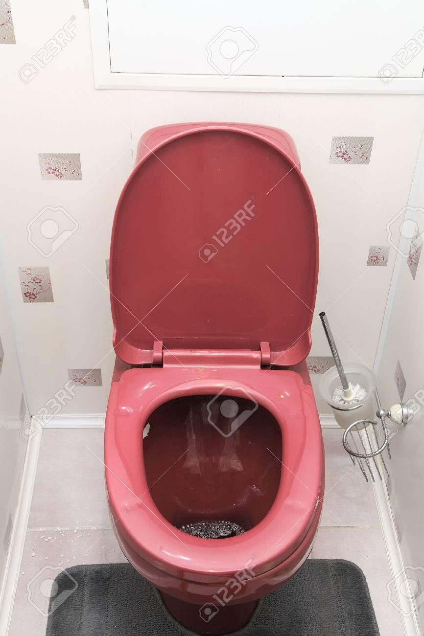 Home flush toilet (toilet bowl,  plunger) Stock Photo - 5794829