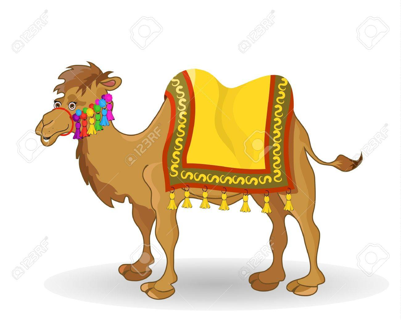 camel - 14180050