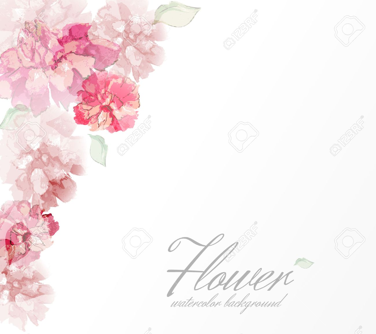Watercolor Flowers Peonies With Transparent Elements Royalty Free