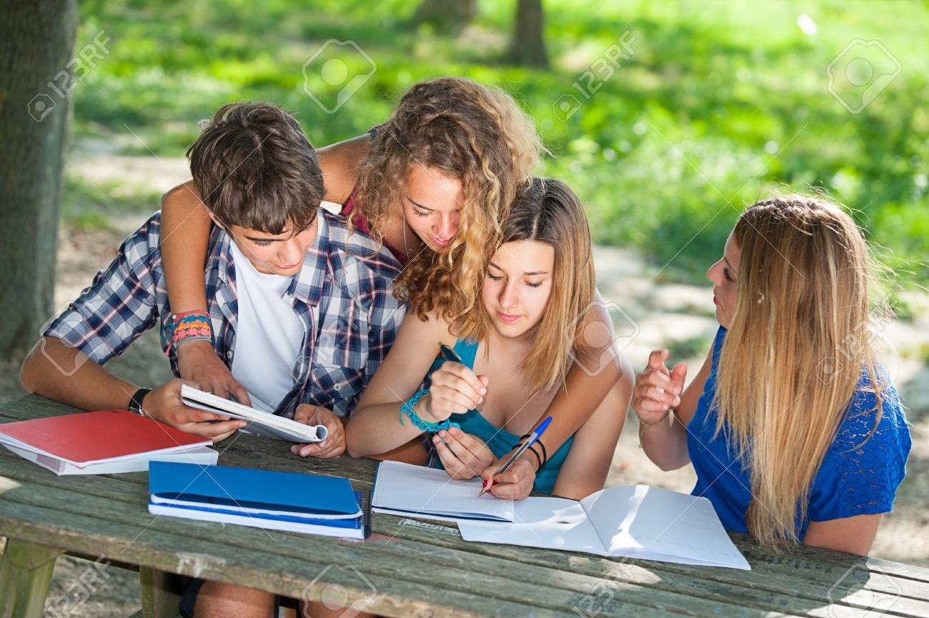 Teeneger students working together at park, Italy Stock Photo - 15121324