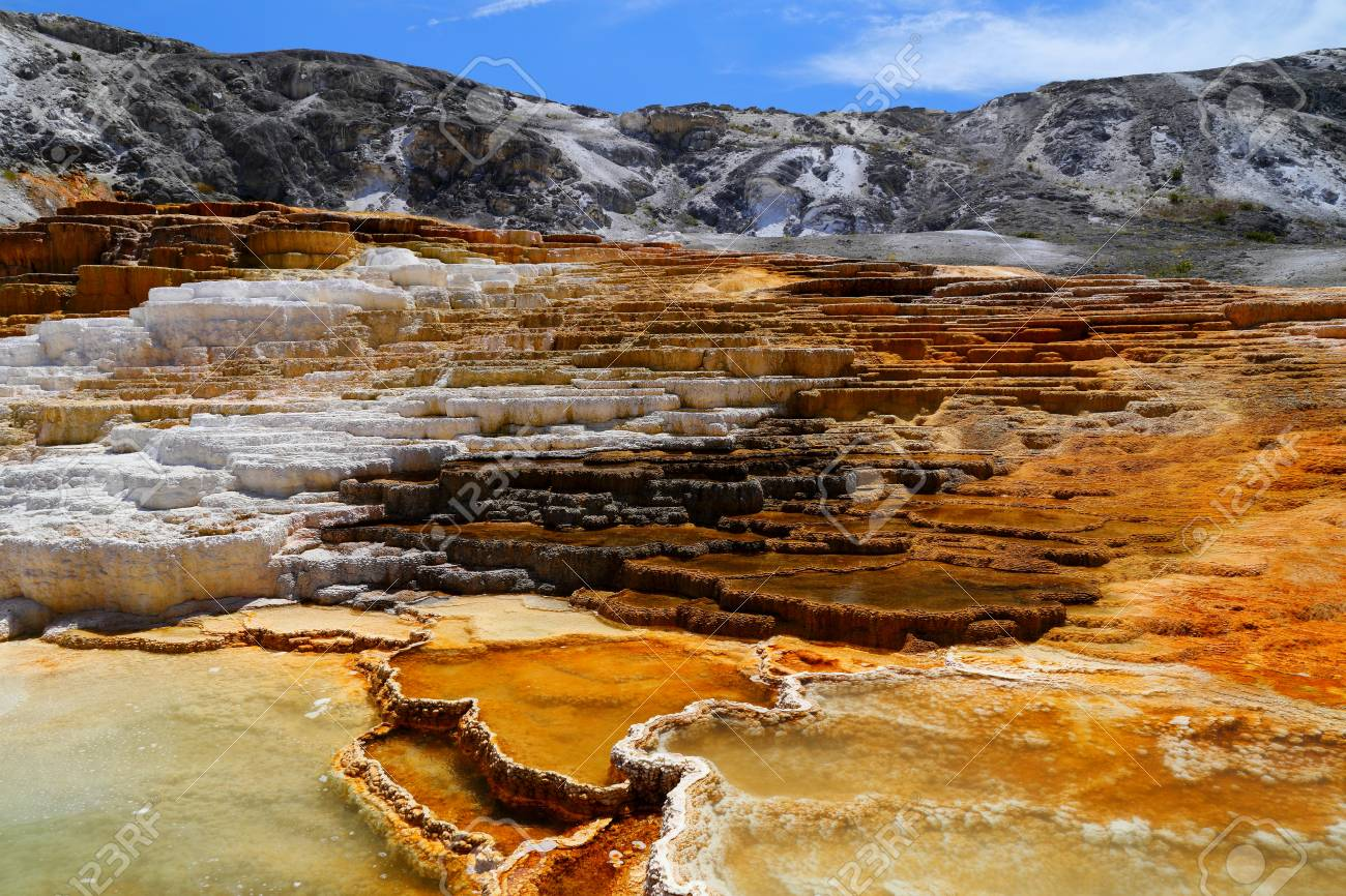 Lower Terraces Area Mammoth Hot Springs In Yellowstone National