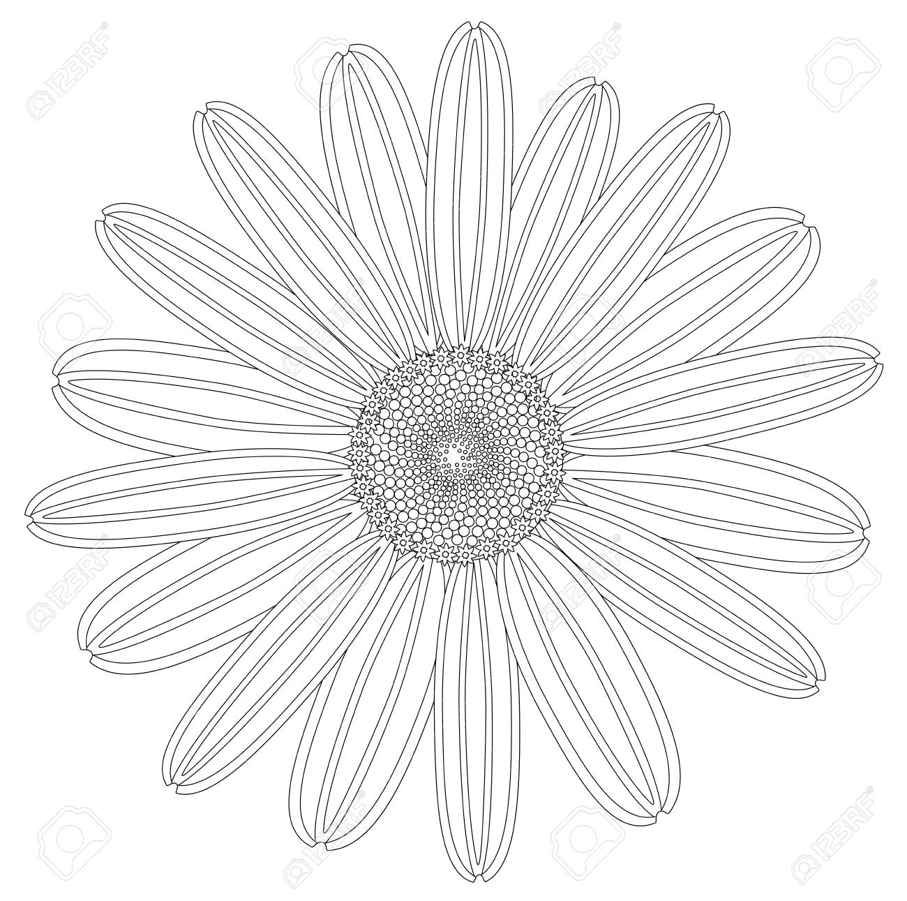 Beautiful drawing daisy flower isolated vector royalty free beautiful drawing daisy flower isolated vector stock vector 96170901 izmirmasajfo