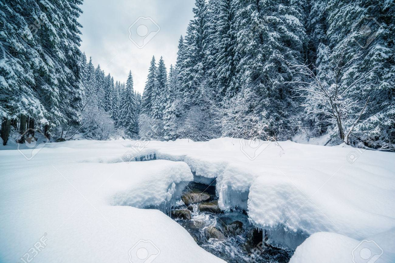 Miracle river at sunlight in the morning. Dramatic and picturesque wintry scene. Carpathian, Ukraine - 64170205