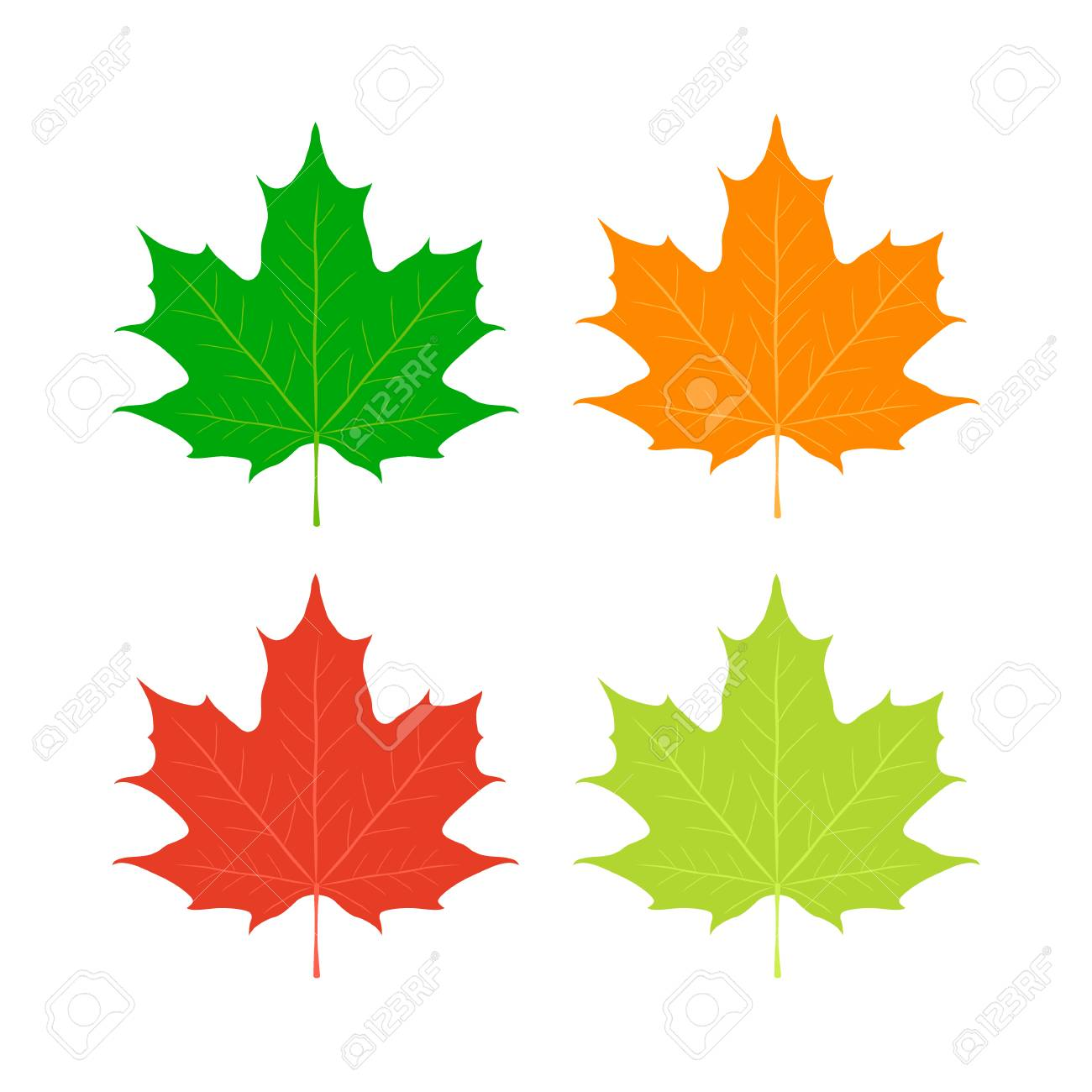 Maple Leaves Canada Symbol Red Orange Yellow Maple In Cartoon Royalty Free Cliparts Vectors And Stock Illustration Image 75817318