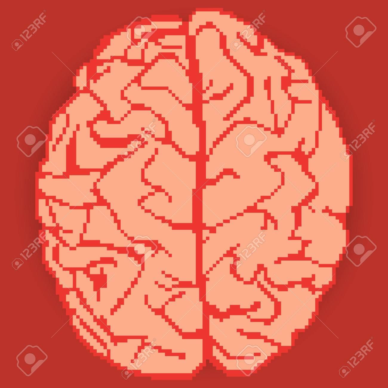 Nice Brain Pixel Art Stock Vector   36988990