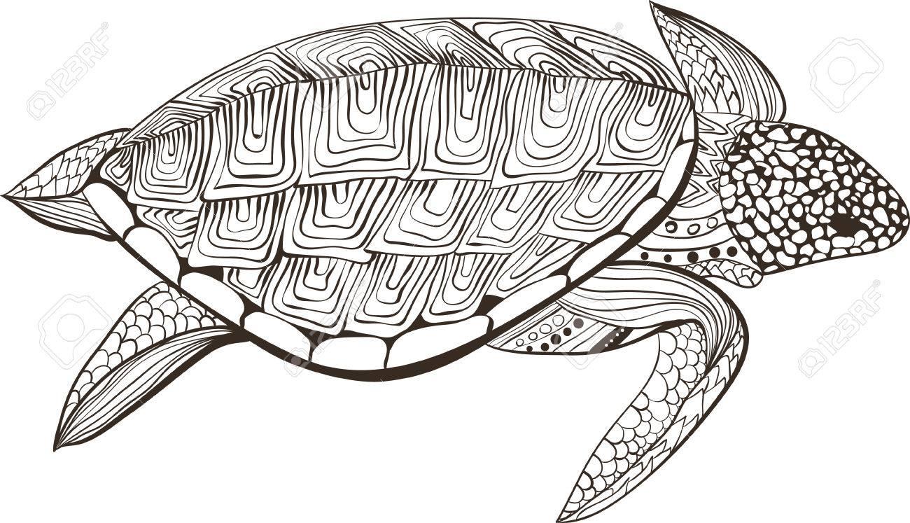 Kleurplaten Voor Volwassenen Schildpad.Schildpad In Zentangle Zenart Doodle Stijl Geisoleerd Op Een Witte Achtergrond Hand Getrokken Schets Voor Volwassen Antistress Kleurplaat Of
