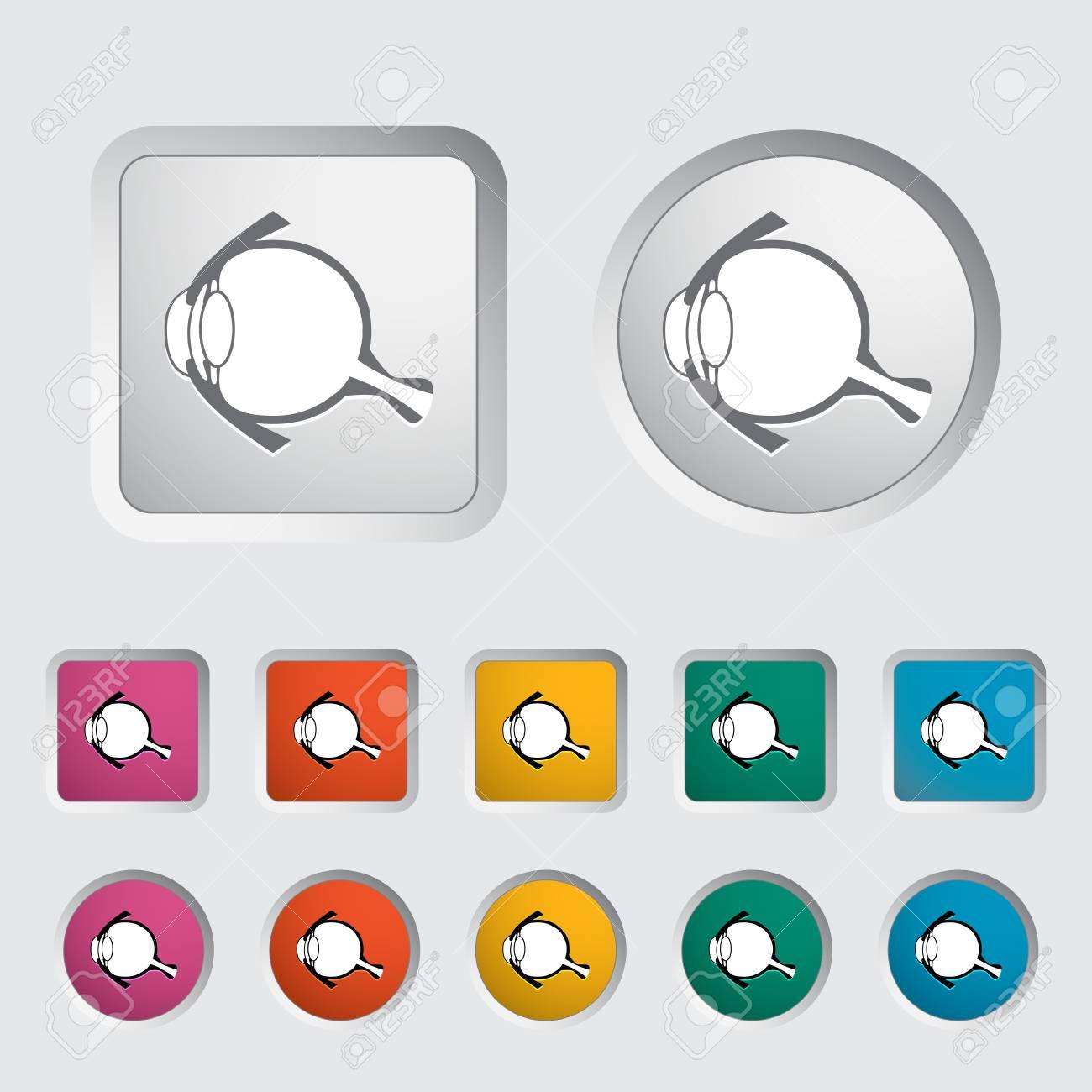 Anatomy eye icon  Vector illustration Stock Vector - 16786832