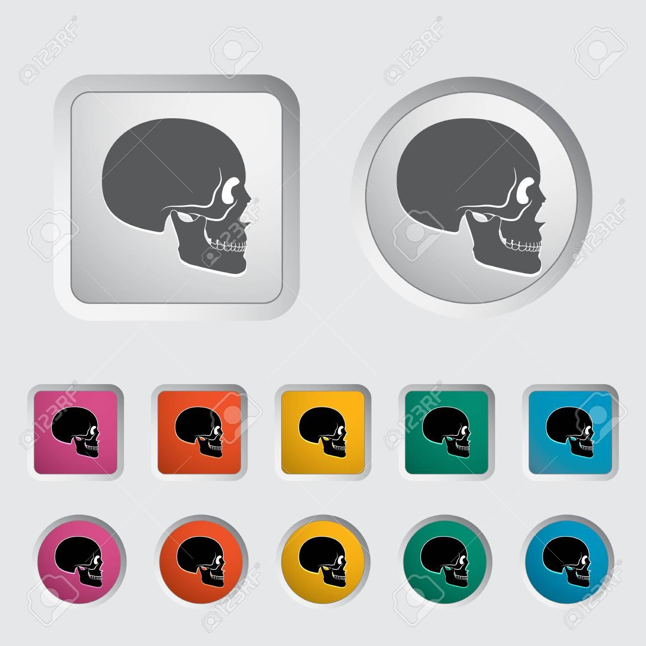 Anotomy skull icon  Vector illustration Stock Vector - 16785556