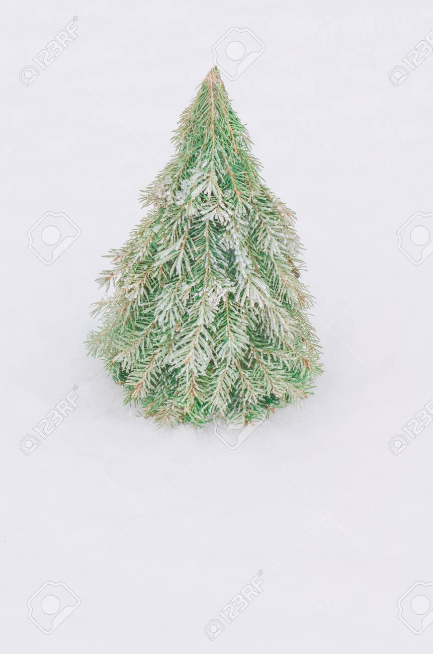 Make A Cone Christmas Tree Based On Warp A Cardboard Or Styrofoam Stock Photo Picture And Royalty Free Image Image 91262073