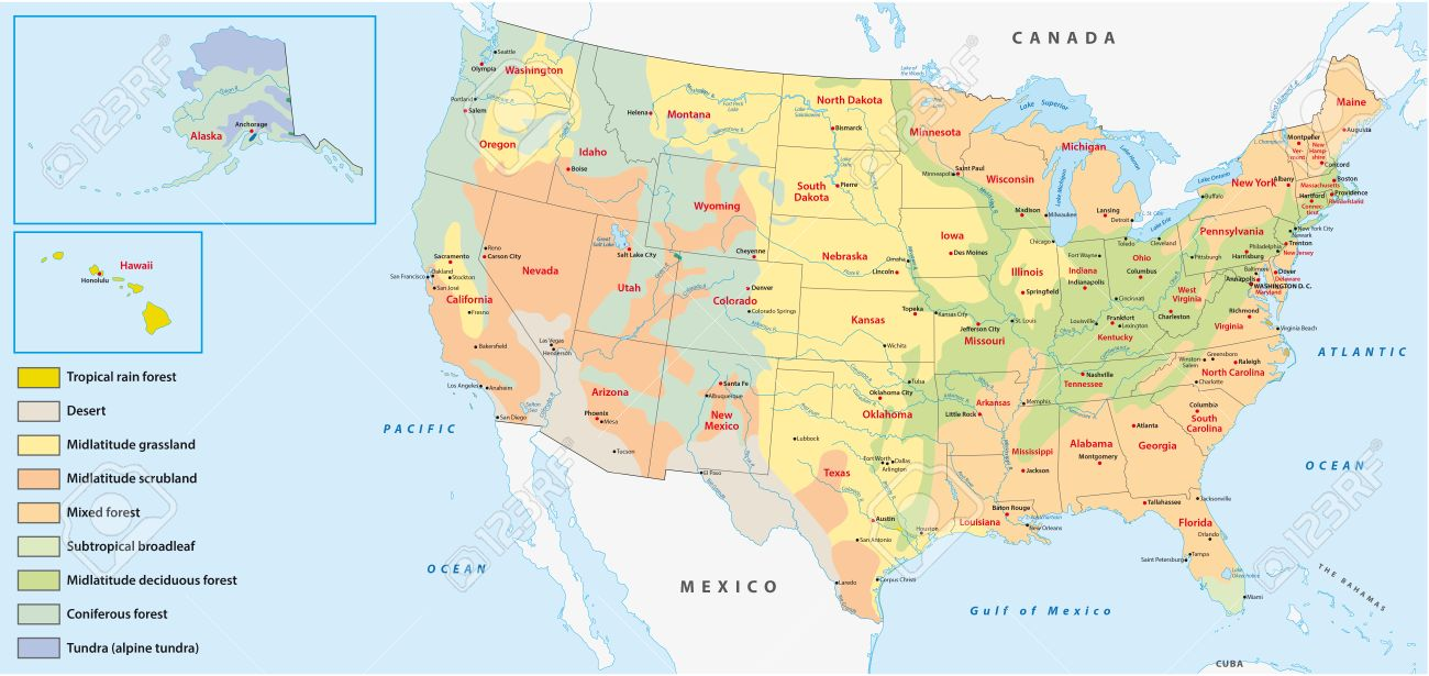 vegetation map of the united states of america