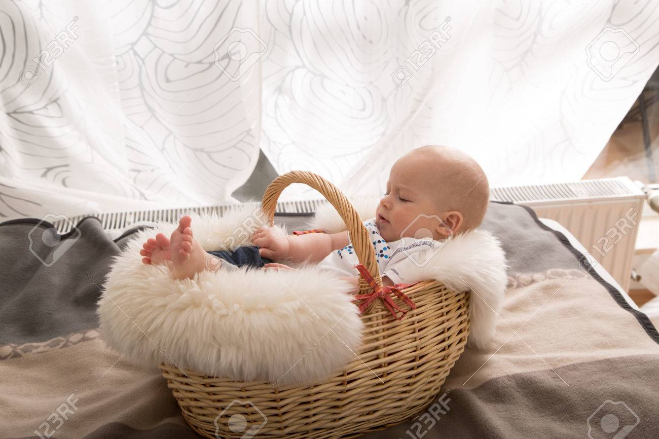newborn baby in the basket stock photo picture and royalty free